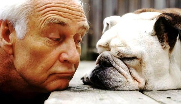 Animais e Idosos: União Perfeita que favorece a qualidade de vida