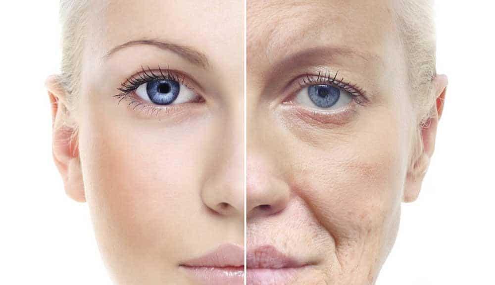 Envelhecimento: Genética x Hábitos de Vida